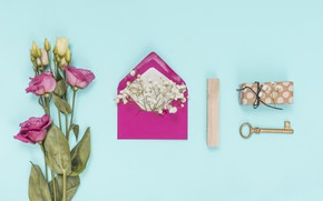 Picture flowers, background, white, pink, flowers, the envelope, eustoma, eustoma