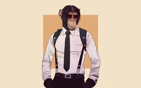Picture Minimalism, Monkey, Glasses, Style, Background, Chimpanzees, Art, Art, Style, Shirt, Background, Animal, Minimalism, Glasses, Shirt, …