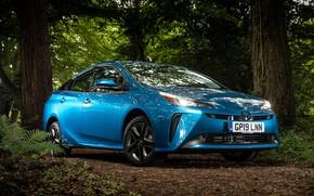 Picture Toyota, Prius, 2019