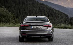 Picture Audi, sedan, feed, Audi A4, 2019