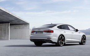Picture Audi, Audi A5, the five-door, 2019, S5 Sportback