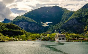 Picture greens, forest, the sky, the sun, clouds, trees, mountains, rocks, bird, shore, ship, Seagull, Norway, …