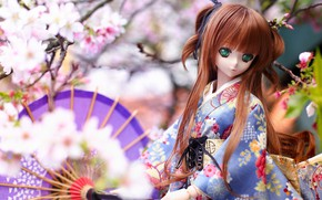 Picture umbrella, toy, Japanese, doll, national