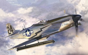 Picture art, airplane, aviation, P-51D Mustang