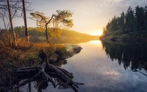 Picture autumn, nature, fog, lake, morning