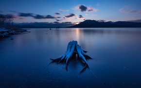 Picture winter, clouds, snow, sunset, mountains, night, lake, blue, shore, snag, twilight, pond