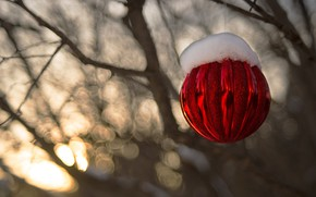Picture winter, snow, branches, red, strip, holiday, toy, Shine, new year, Christmas, ball, decoration, hanging, bokeh, …