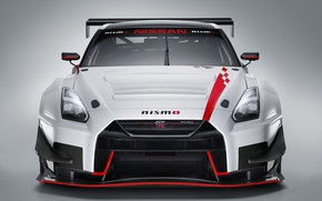 Picture GTR, Nissan, GT-R, racing car, front view, GT3, 2018, Nismo