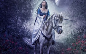 Picture girl, flowers, night, the moon, horse, garden, halo, photo art