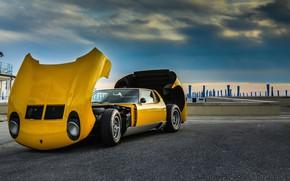 Picture Lamborghini, 1971, Miura, P400, SV