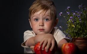 Picture flowers, apples, portrait, boy, child, boy, Alexander Yakimenko