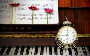 Picture notes, watch, piano, gerbera