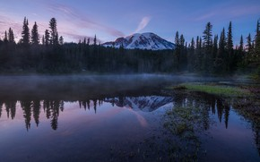 Picture forest, the sky, mountains, fog, reflection, shore, the evening, morning, ate, USA, pond, snow, national …