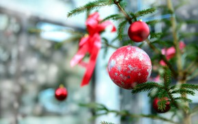 Picture winter, balls, branches, holiday, balls, blur, Christmas, red, New year, needles, bow, stars, the room, …