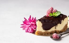 Picture flower, berries, raspberry, cake, cream
