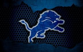 Picture wallpaper, sport, logo, NFL, american football, Detroit Lions
