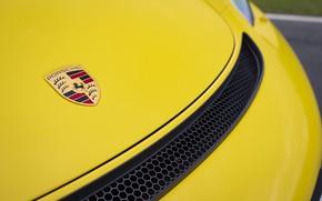 Picture Porsche, The hood, Cayman, Icon, GT4, 2019, Porsche 718 (982) Cayman GT4