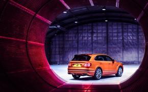 Picture machine, Bentley, Speed, crossover, Bentayga
