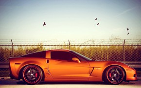 Picture Z06, Corvette, Chevrolet, Orange, Coupe, Tuning