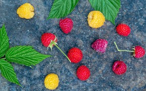 Picture leaves, raspberry, background, berry, bokeh