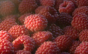Picture Macro, Art, Food, Berry, Raspberry, Raspberry, Rendering, Rendering, Macro, Food, Berry, Orlane Brouillet, by Orlane …
