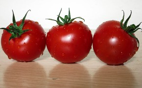 Picture surface, vegetables, tomatoes