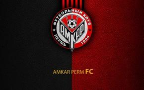 Picture wallpaper, sport, logo, football, Russian Premier League, Amkar Perm