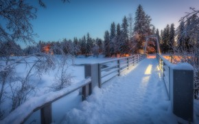 Picture winter, forest, bridge, river, Finland