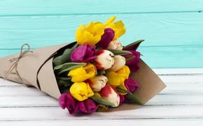 Picture bouquet, tulips, flower, color