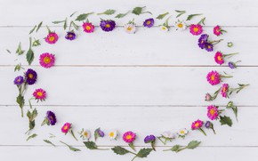 Picture white, background, frame, oval, wood, flowers