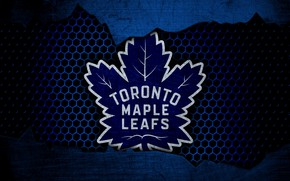 Picture wallpaper, sport, logo, NHL, hockey, Toronto Maple Leafs