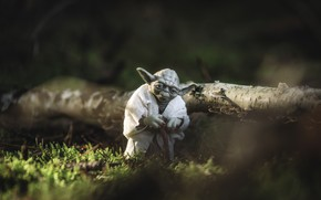 Picture nature, fiction, log, Star wars, Jedi, Iodine, character