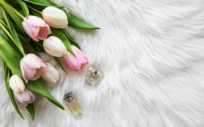 Picture perfume, tulips, fur, bottles, Olena Rudo