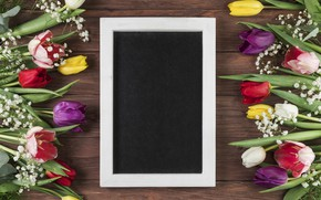 Picture flowers, frame, colorful, tulips, flowers, beautiful, tulips, spring, frame, multicolored