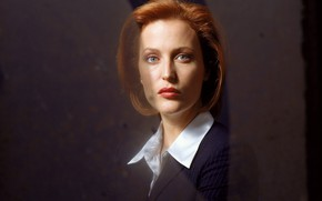 Picture the series, The X-Files, Classified material, Gillian Anderson, Dana Scully