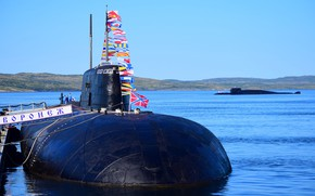 Picture submarines, Voronezh, Tula