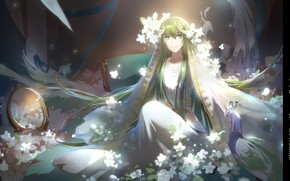 Picture smile, mirror, peacock, guy, green hair, veil, white flowers, white clothes, Enkidu, Fate/Srange Fake, by …