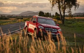 Picture road, red, vegetation, Mercedes-Benz, roadside, pickup, 2018, X-Class
