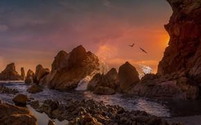 Picture landscape, sunset, squirt, birds, nature, stones, the ocean, rocks, CA, surf, USA