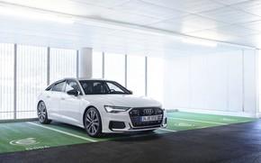 Picture white, Audi, sedan, the room, hybrid, Audi A6, four-door, 2020, A6, A6 Sedan, 55 TFSI …