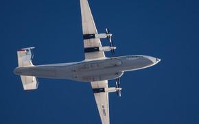 Picture The plane, Ukraine, Antey, An-22, In flight, ANTK imeni O. K. Antonova, Military transport aircraft