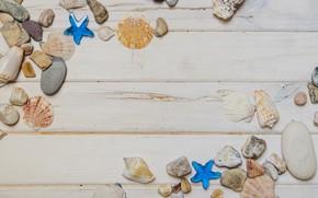 Picture stars, stones, shell, summer, beach, wood, marine, starfish, pebbles, seashells
