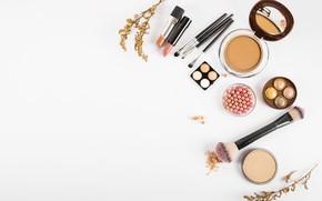 Picture makeup, shadows, cosmetics, blush, brush, powder, makeup, decorative cosmetics