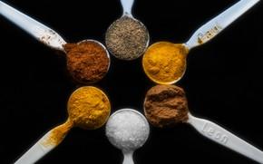 Picture cinnamon, pepper, salt, turmeric, saffron, Turmeric, Cayenne papper