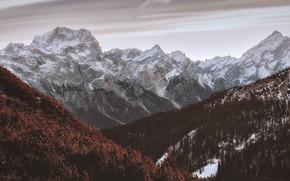 Picture snow, landscape, nature, Mountains, Snowy mountain, Snow peak