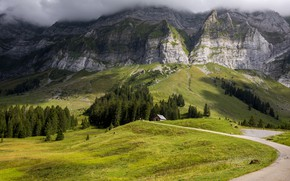 Picture road, summer, mountains, house
