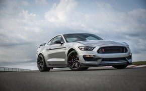 Picture grey, Mustang, Ford, Shelby, track, GT350R, 2020