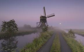 Picture Holland, Windmill, Full Moon, Streefkerk, Broekmolen