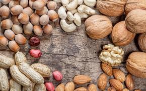 Picture nuts, almonds, peanuts, walnut, cashews