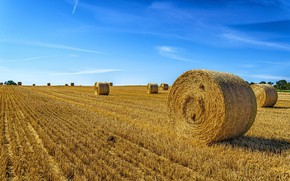 Picture field, hay, bales
